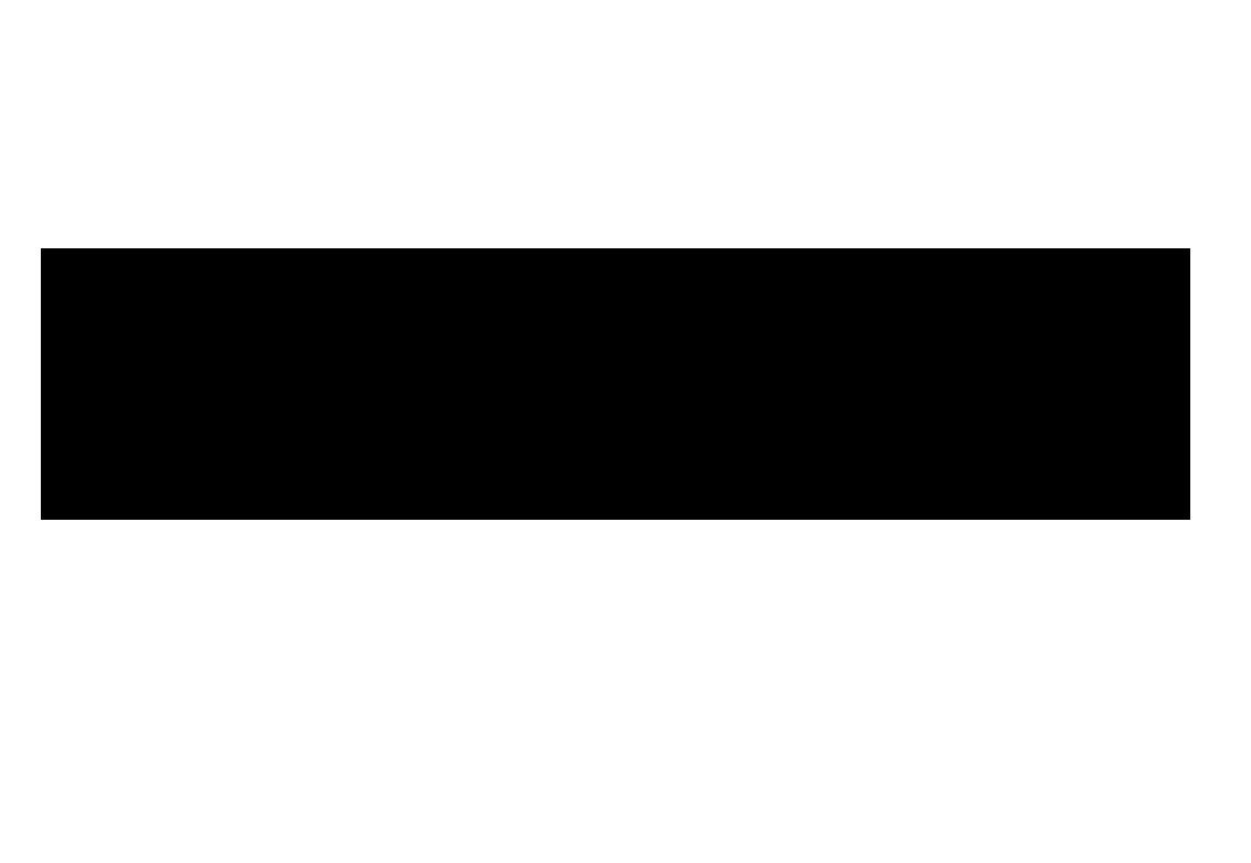 Naschzeug-Logo